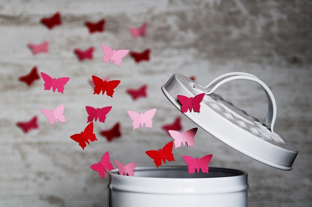A képhez tartozó alt jellemző üres; butterfly-4061336_640.jpg a fájlnév